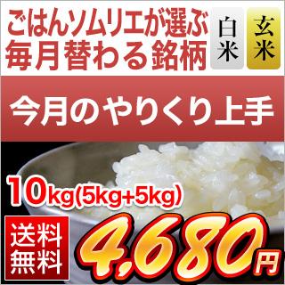令和2年(2020年) 【白米・玄米セット】香川県産 ヒノヒカリ 10kg(5kg×2袋)【送料無料・令和2年産】 【12月のやりくり上手】【白米・玄米】【即日出荷】