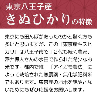 令和2年産(2020年) 東京八王子産 きぬひかり 300g(2合) × 3パック 真空パック【白米・ゆうパケット便送料込】