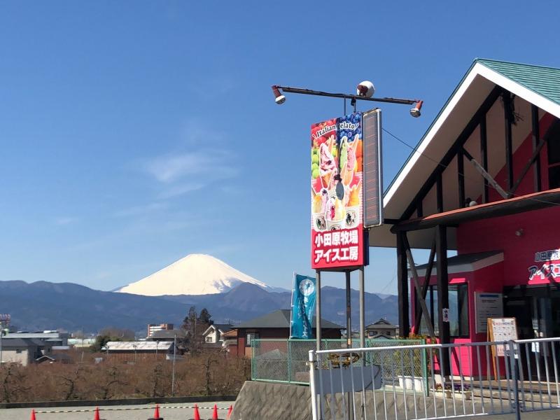 【送料無料】小田原牧場ジェラートBセット