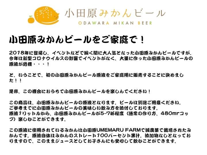 小田原みかんビール原液(1リットル)1本