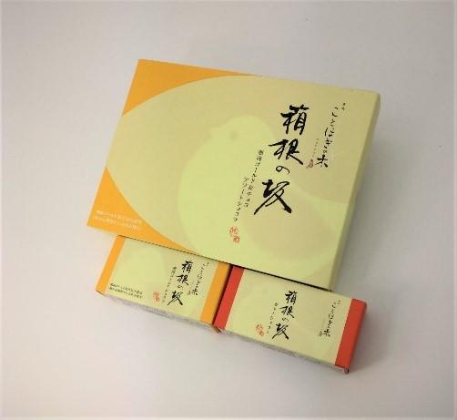 【ことほぎの木】 箱根の坂ガトーショコラ 湘南ゴールド&ショコラ詰合せ 湘南ゴールド3個ショコラ3個
