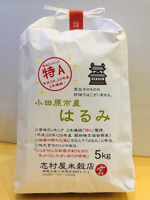 小田原のはるみ 5キロ