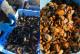 ムール貝の醤油麹煮|魚市場キッチン缶詰シリーズ|防災備蓄食品にも