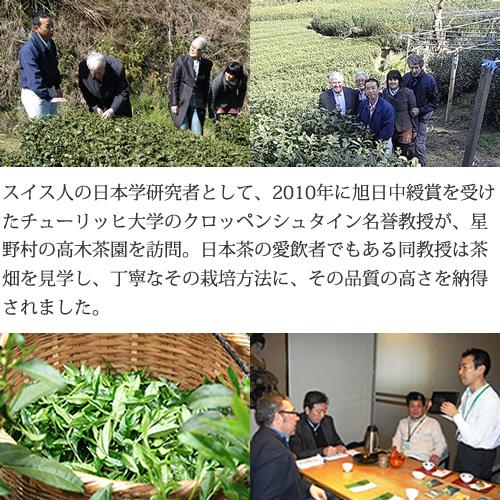 新茶入荷 2021年産 奥八女星野茶 高木茶園の深蒸し高級煎茶