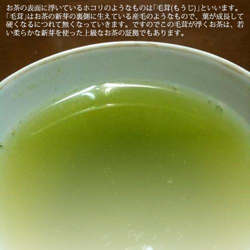 2020年 奥八女星野茶 高木茶園の伝統本玉露