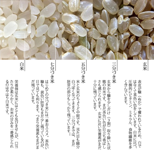 九州産フレッシュパックのお米プレミアムギフト[2kg×2袋]【のし・メッセージカード付き】