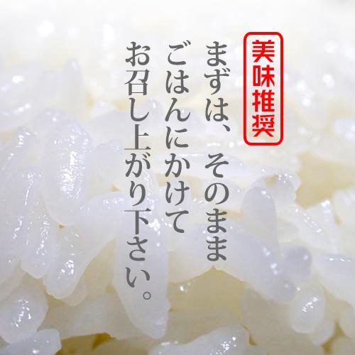 長崎県対馬産 浜御塩 藻塩[120g×1袋]