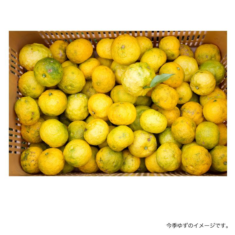 農薬不使用 木頭ゆず(黄玉) 3kg (約30個)+増量中!