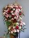 お祝いスタンド花(オーダーメイド)