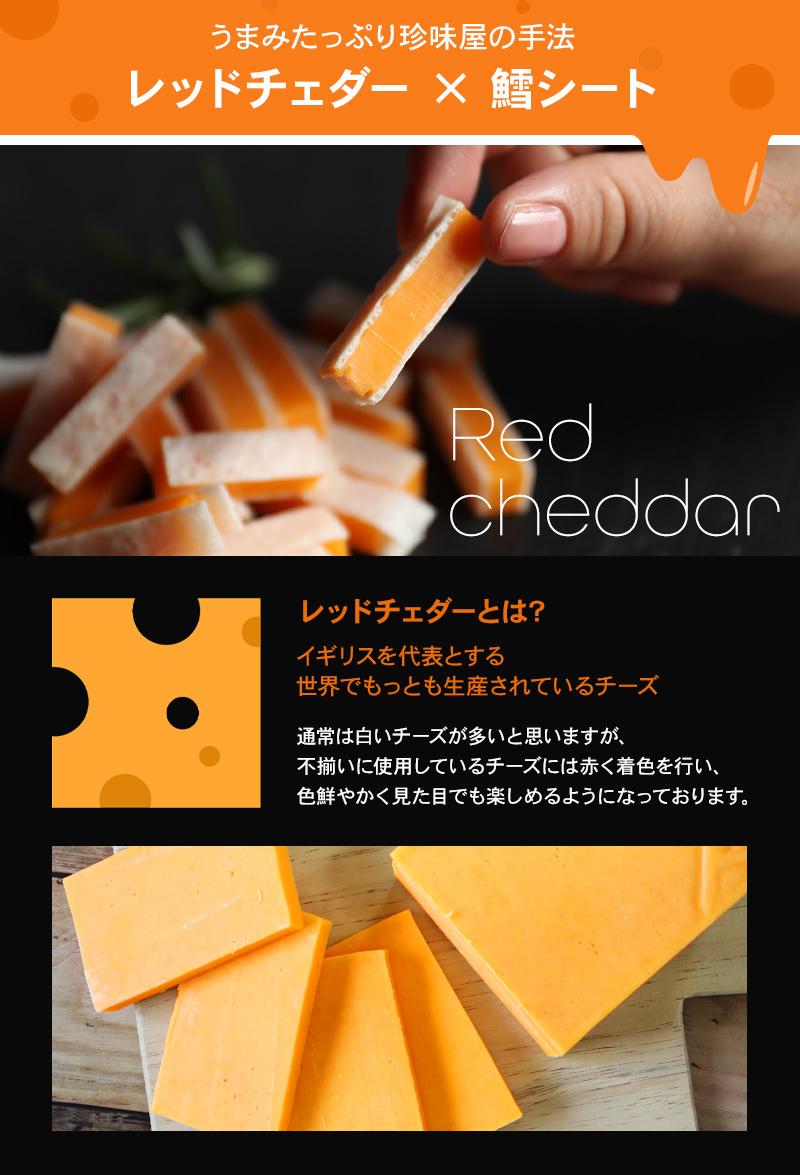 不揃いレッドチェダー100g×25袋 【送料無料】