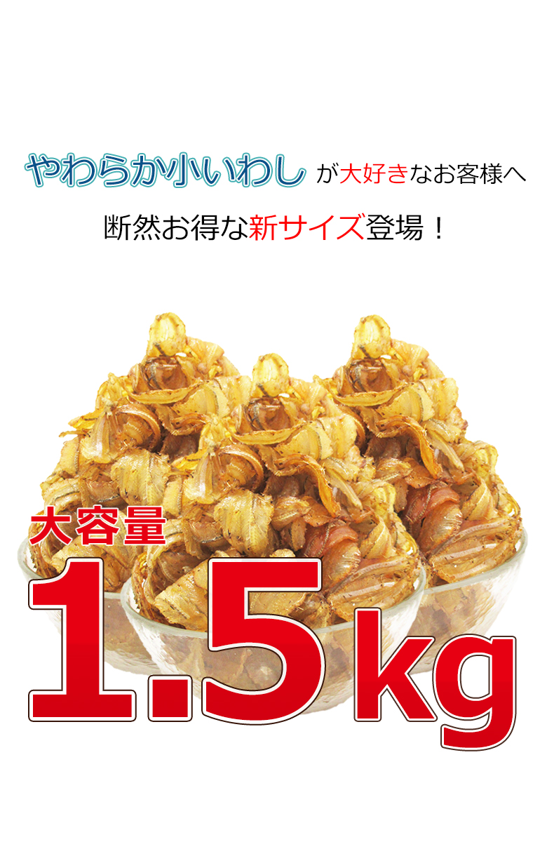 やわらか小いわし1.5kg【送料無料】