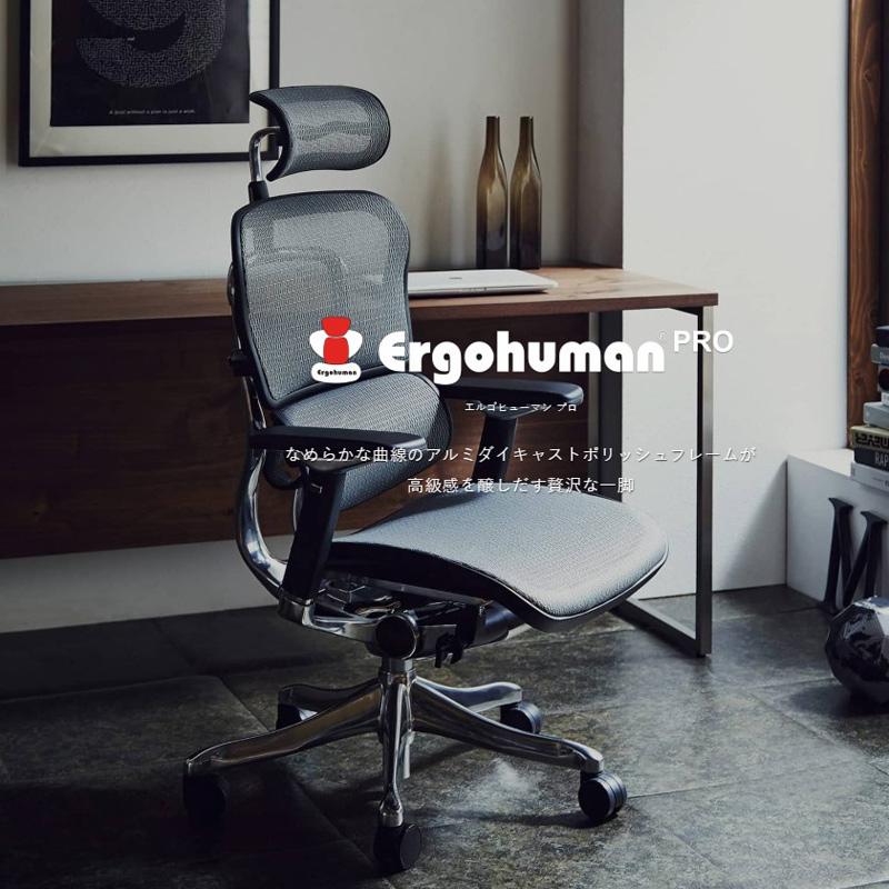 【関家具】 オフィスチェア Ergohuman PRO エルゴヒューマン・プロ・ロー EHP-HAM エラストメリック・メッシュ