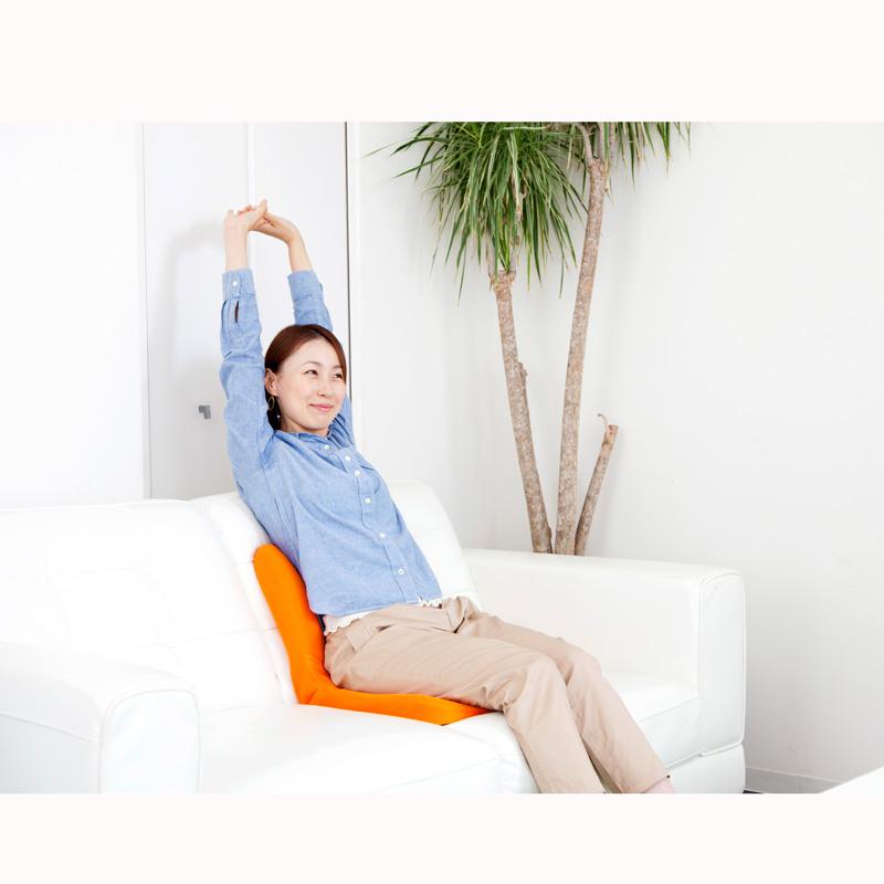 【ベストセラー】 pinto 姿勢サポートクッション 茶(Brown) エスリーム技術