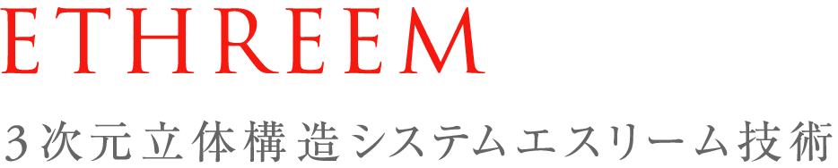 【ベストセラー】 pinto 姿勢サポートクッション 黒(Black) エスリーム技術