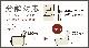 【浜本工芸】 2人掛け革張りソファ L-4850(152) 色番:2712ベージュ 幅151cm 国産家具