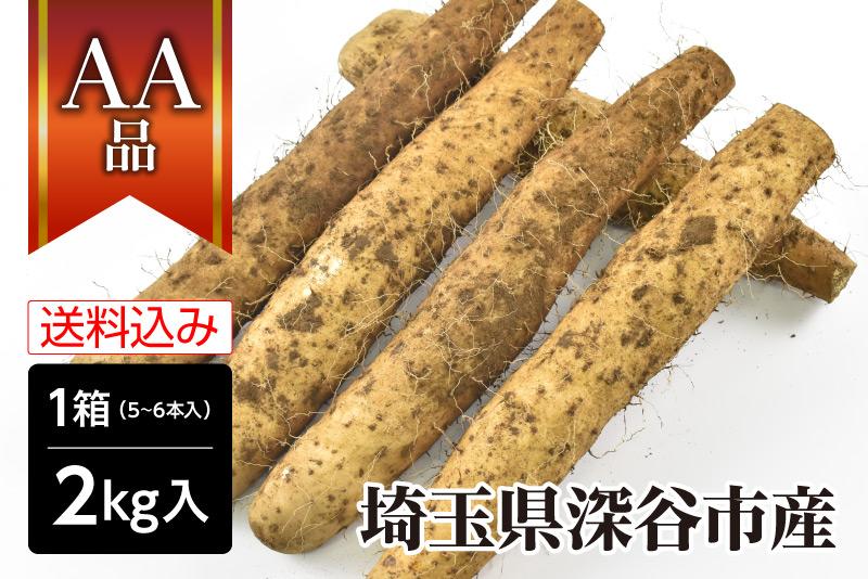 埼玉県深谷市 | 産地直送 大和芋 AA品 2�(土つき)