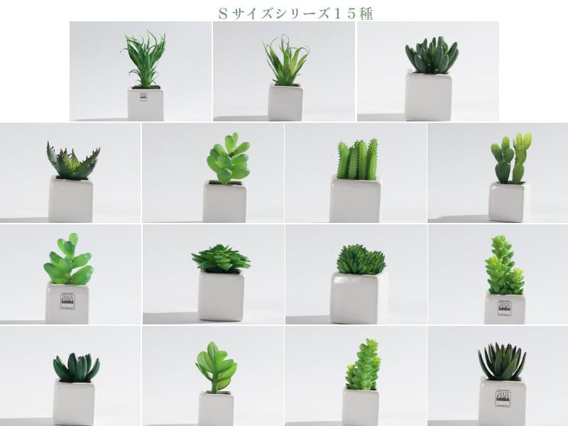 """""""ASA Green Pot"""" グリーンポット2  Sサイズ"""