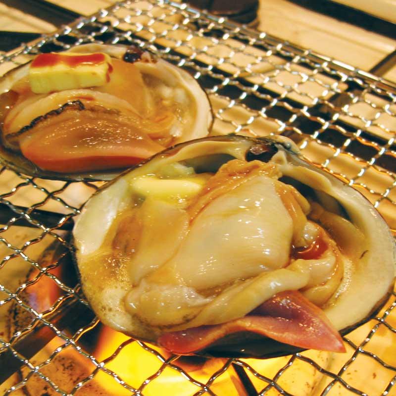 いわき産 活ほっき貝