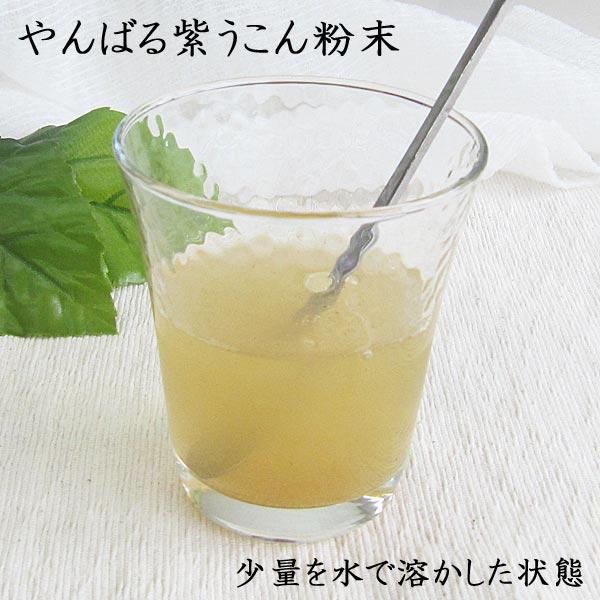 やんばる 紫ウコン 粉末タイプ 100g 沖縄県産紫ウコン使用