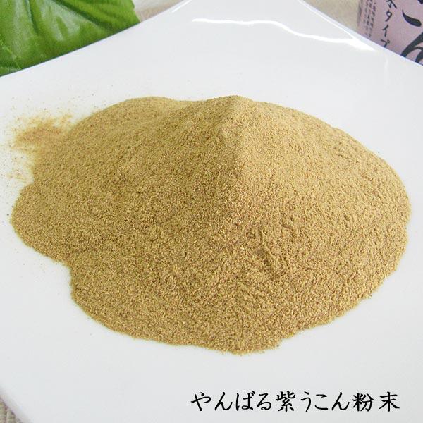 やんばる 紫ウコン 粉末タイプ 100g 沖縄県産紫ウコン使用 送料込み