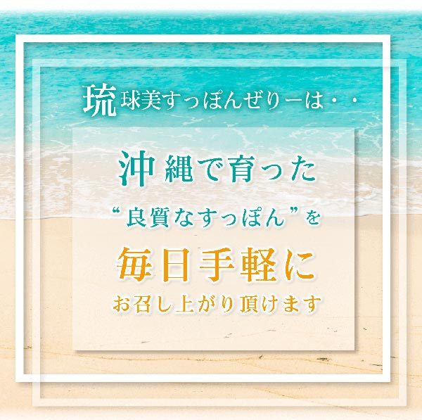 琉球美すっぽんゼリー マンゴー風味 10g×10包入り サプリ生活 レターパック
