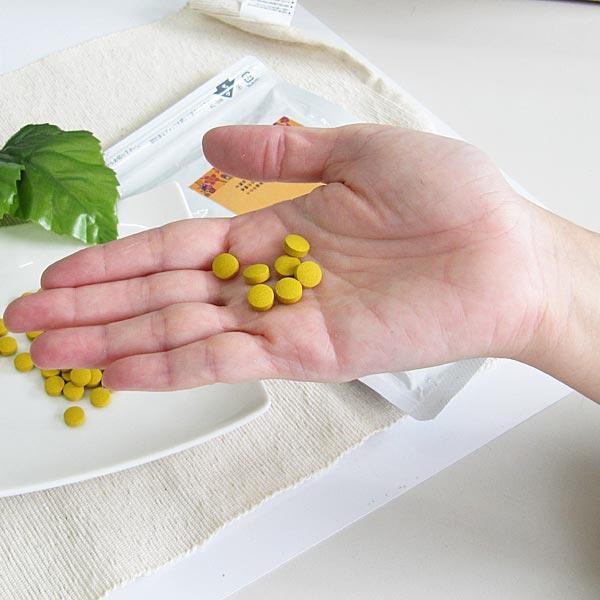 やんばる秋うこん粒 500粒入り(目安33日分)×1袋 沖縄産 農薬不使用 ウコン堂 送料込み