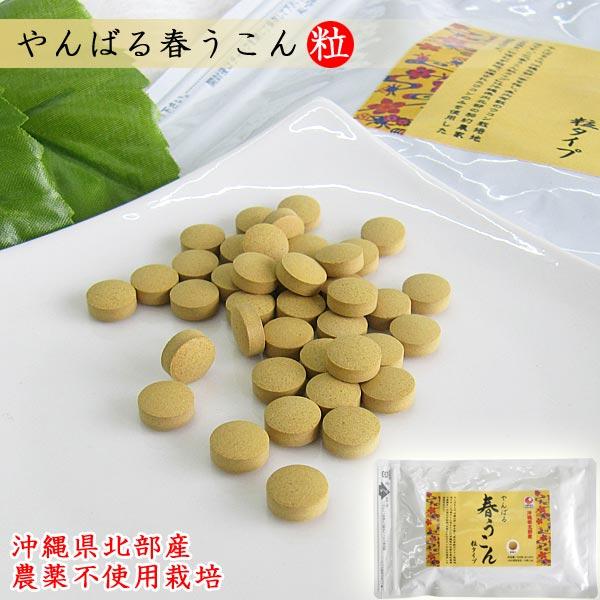 やんばる春うこん粒 500粒入り(目安33日分) 沖縄産 農薬不使用 ウコン堂 送料込み