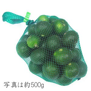 期間限定!青切りシークヮーサー(生) [約2kg] 冷蔵発送 送料込み