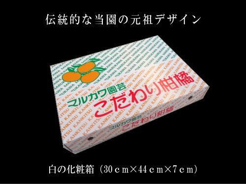 【商品番号08】蜜ツ星 白の化粧箱 Mサイズ 秀品 24玉入