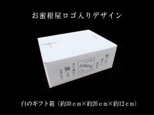【商品番号255】紅ダイヤ 白のギフト箱 大玉サイズ 秀品 約3kg入
