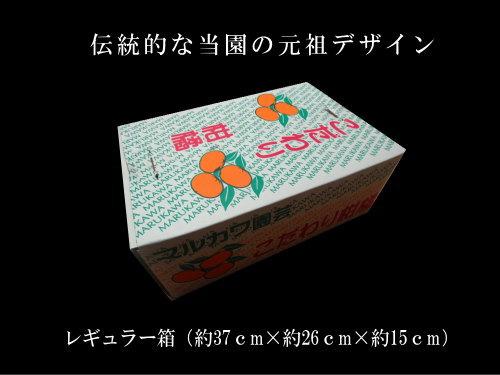 【商品番号253】紅ダイヤ レギュラー箱 サイズおまかせ 厳選プレミアム 約3.5kg入