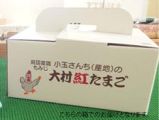 大村紅たまご(40個入)