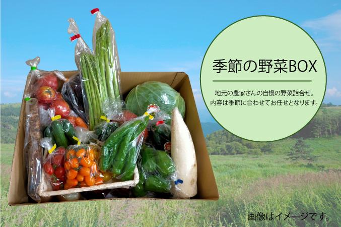 季節の野菜BOX【野菜お任せ】