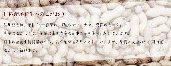 【送料無料】塩ゆで落花生(化粧箱入り)-1