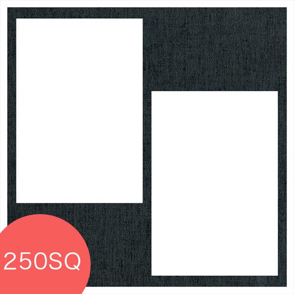 ヒンジ中枠【250SQ用】/2L2穴/黒(LA)