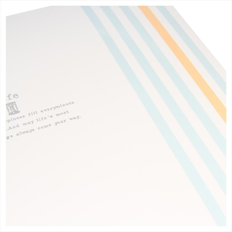 ヒンジアルバムセット【250SQ用】/ライフ 裏紙3枚・中枠2枚