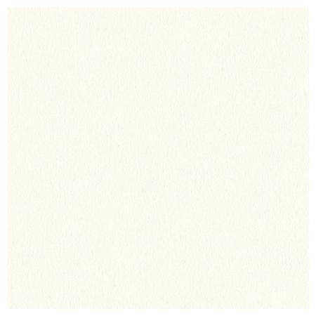 スーベニア/デザイン中枠【六切用】百日祝い