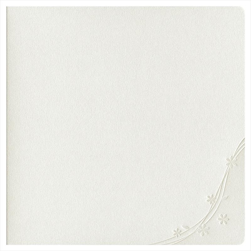 紙台紙SQ 2L/白(L2×1枚)