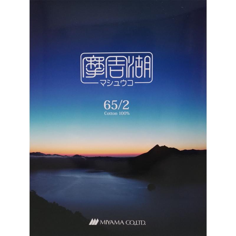 摩周湖 /摩周湖メランジ(カラー見本帳)