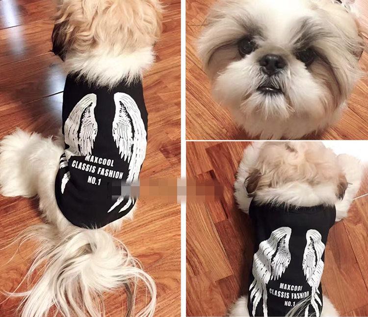 送料無料!犬の服 トップス Tシャツ ドッグウエア ペット用品 ペット服 ペットグッズ 春 夏 新作 犬服 つばさ