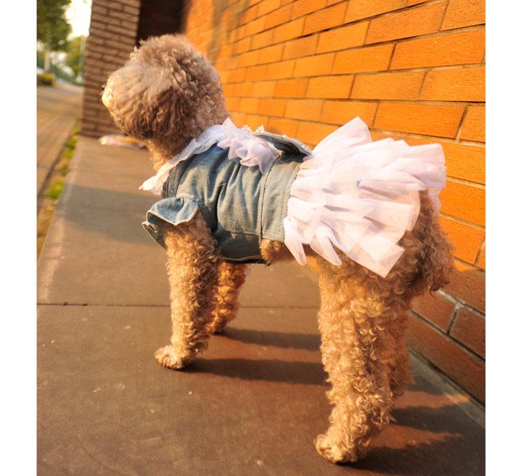 犬の服 スカート ドッグウエア ペット用品 ペッド服 ペットグッズ 春 夏 新作 犬服 メイト服