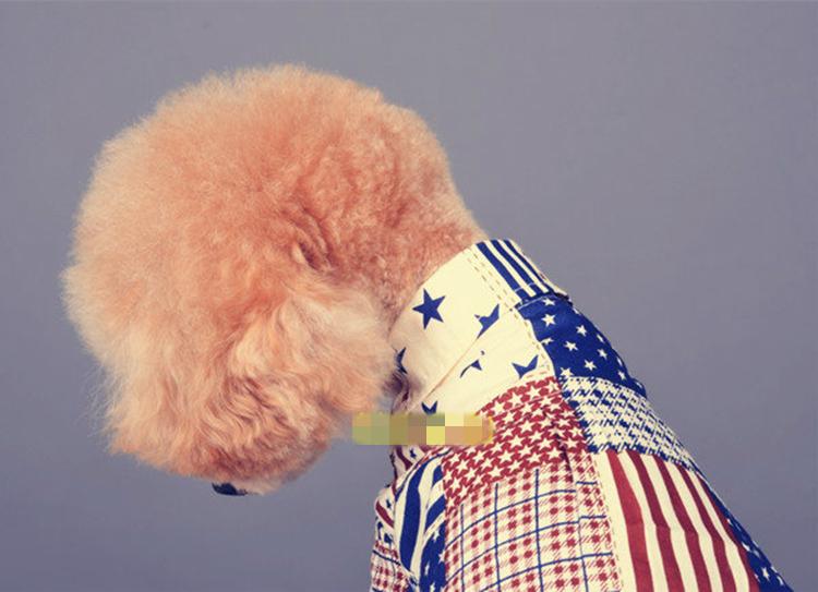 送料無料!犬服 人気なペット服 ワンちゃんTシャツ おしゃれペット コスチューム ペットグッズ ポメラニアン・プードル・チワワ・ダックス・マルチーズ・シーズ