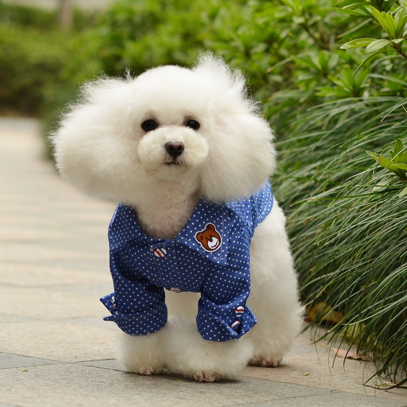 送料無料!犬服 ドット柄Tシャツ ペット服 ドッグ服  ペットTシャツ ペットウェア 犬の服 半袖 可愛い夏ペット服Tシャツ 気分も軽やかに♪