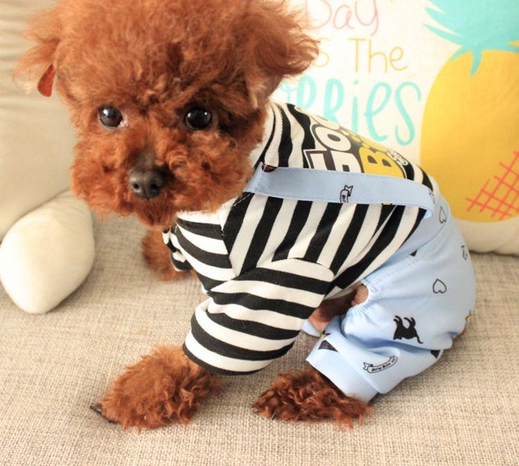 犬の服 サロペット風 ボーター柄 四足 前開き つなぎ ドッグウエア ワンちゃん服 ペットウェア コスチューム