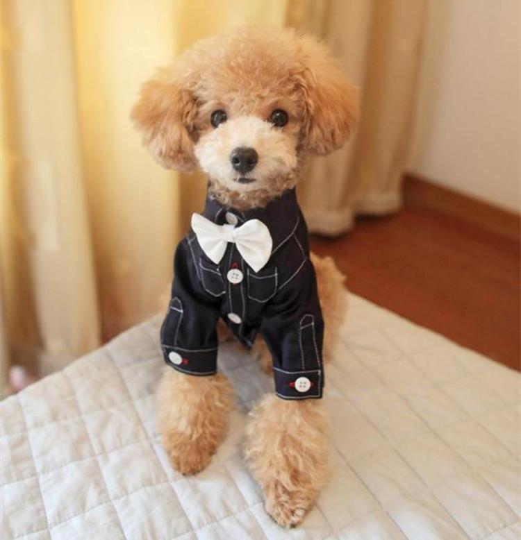 送料無料!犬服 ペット用品 シャツ フォーマ 蝶ネクタイ付き コスプレ結婚式 誕生日 プレゼント犬洋服 ペットグッズ お散歩が楽しくなりますよっ。