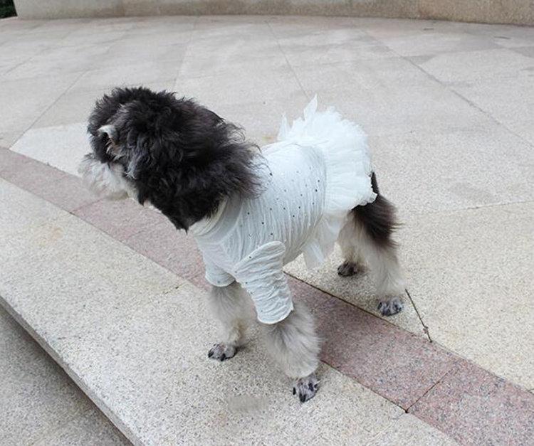送料無料 犬の服 お嬢様オシャレワンピース ペットグッズ ビッグ ワンちゃん服 弾性 イベント、誕生日、パーティー、写真撮影の時にもこのペット服を着ます