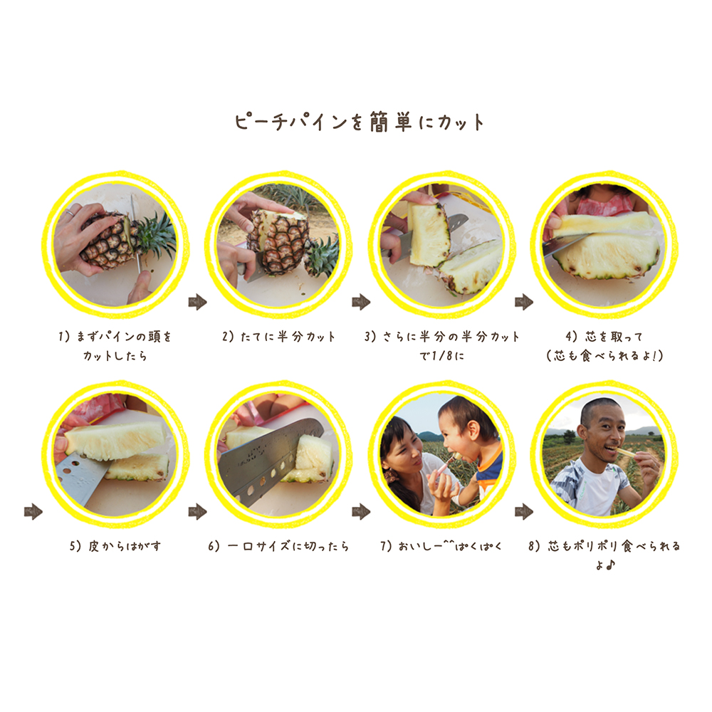 【西表島のピーチパイン】2kg 平井農園から直送 (同梱不可・送料込)