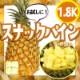 スナックパイン1.8kg(約2-5玉)サイズ混合 沖縄県産 送料無料 (旬な果実の為同梱不可) 【SNKP-1.8CL】