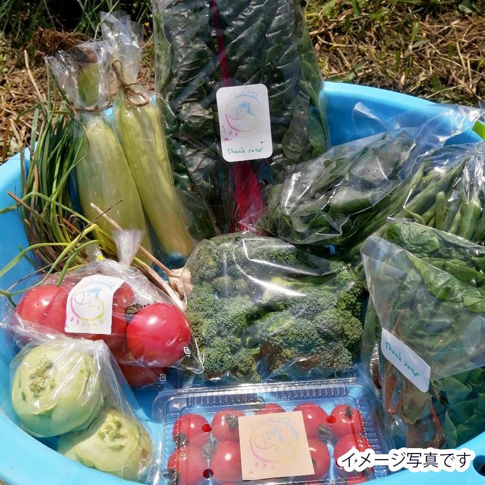 【お野菜の詰め合わせ + 沖縄果物(1〜2品) セット 】 おんなの駅農産物スタッフが選ぶ特別お任せセット  (送料無料・同時購入・同梱不可商品)