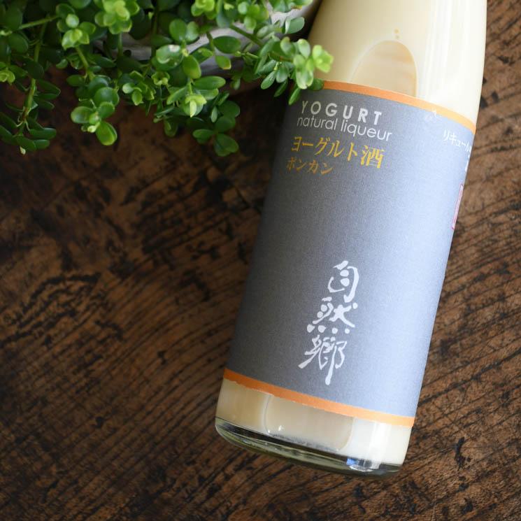 【ヨーグルト酒】自然郷 ヨーグルト酒 ポンカン<500ml>